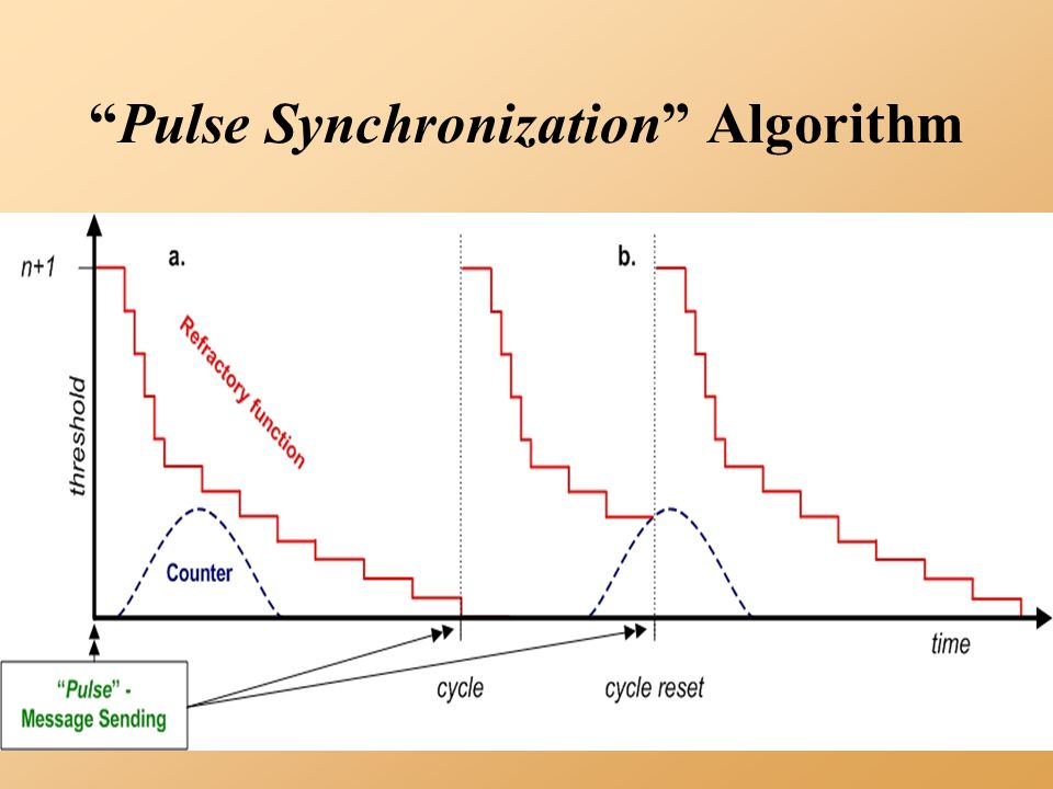 Pulse Synchronization Algorithm