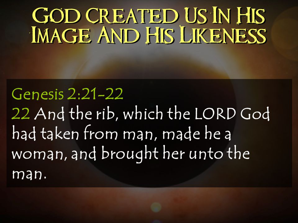 God Created Us In His Image And His Likeness Genesis 2:21-22 22 And the rib, which the LORD God had taken from man, made he a woman, and brought her u