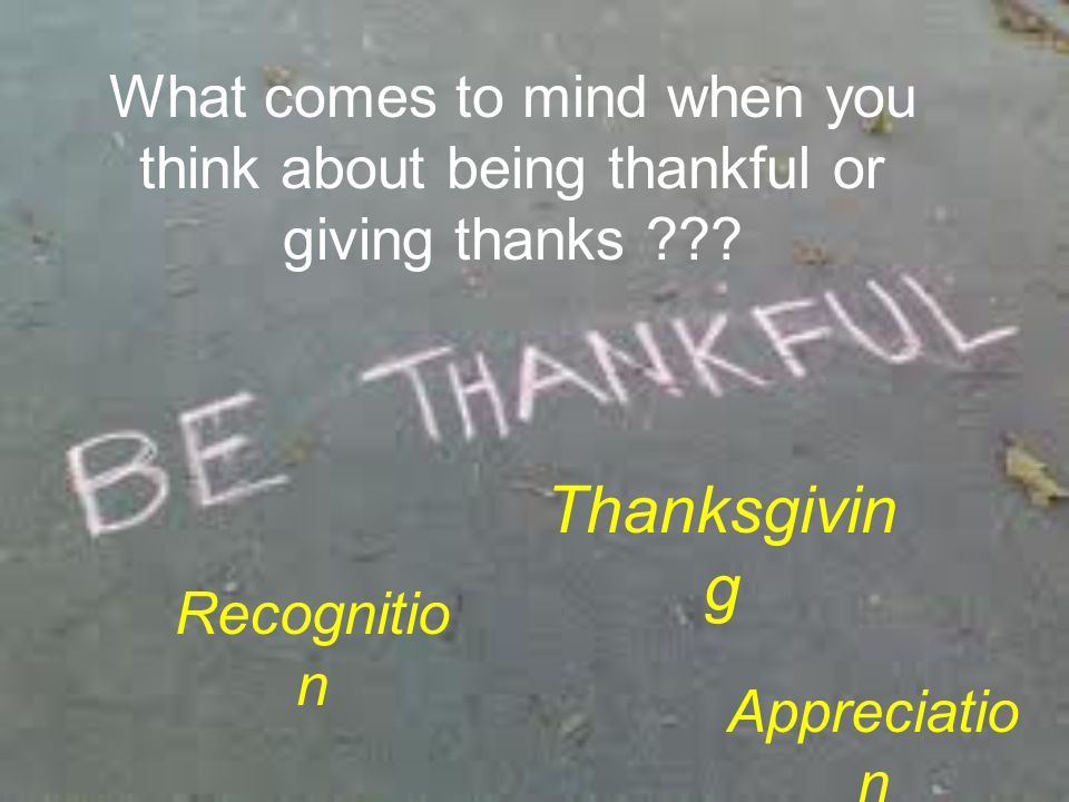 Reasons to Be Thankful… What's… Who's…