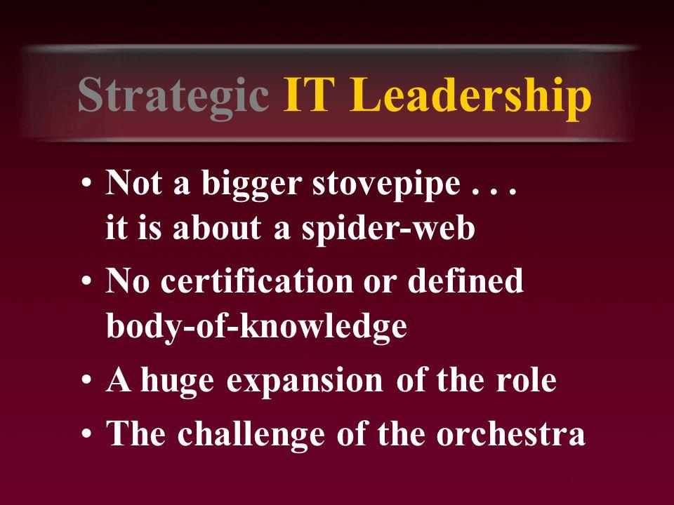 Strategic IT Leadership Not a bigger stovepipe...