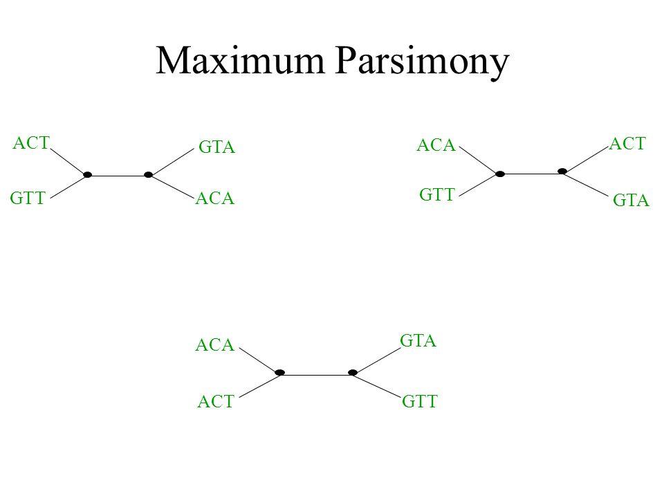 Maximum Parsimony ACT GTTACA GTA ACA ACT GTA GTT ACT ACA GTT GTA