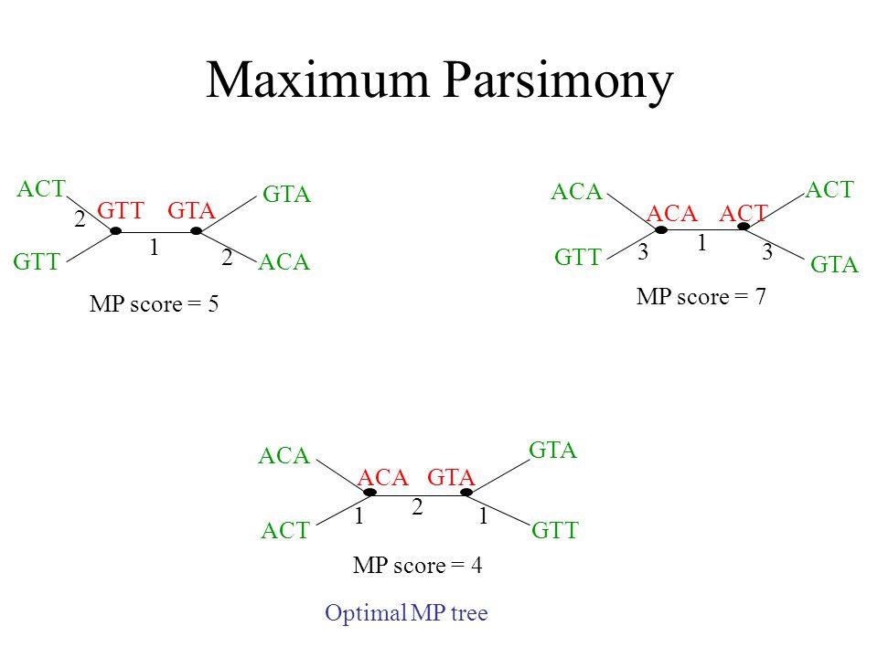 Maximum Parsimony ACT GTT GTA ACA GTA 1 2 2 MP score = 5 ACA ACT GTA GTT ACAACT 3 1 3 MP score = 7 ACT ACA GTT GTA ACAGTA 1 2 1 MP score = 4 Optimal MP tree
