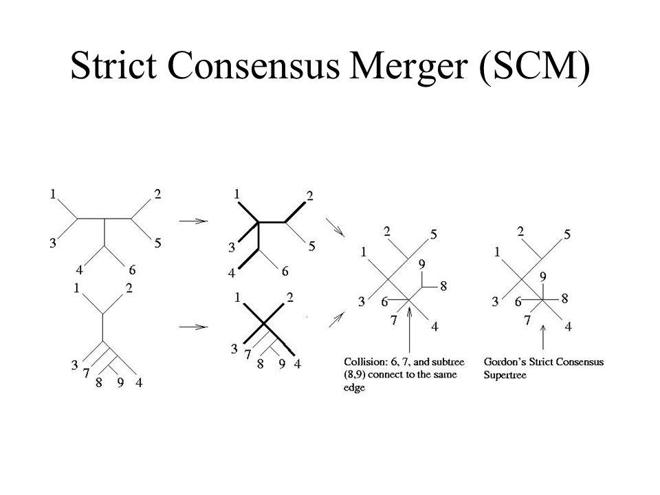 Strict Consensus Merger (SCM)