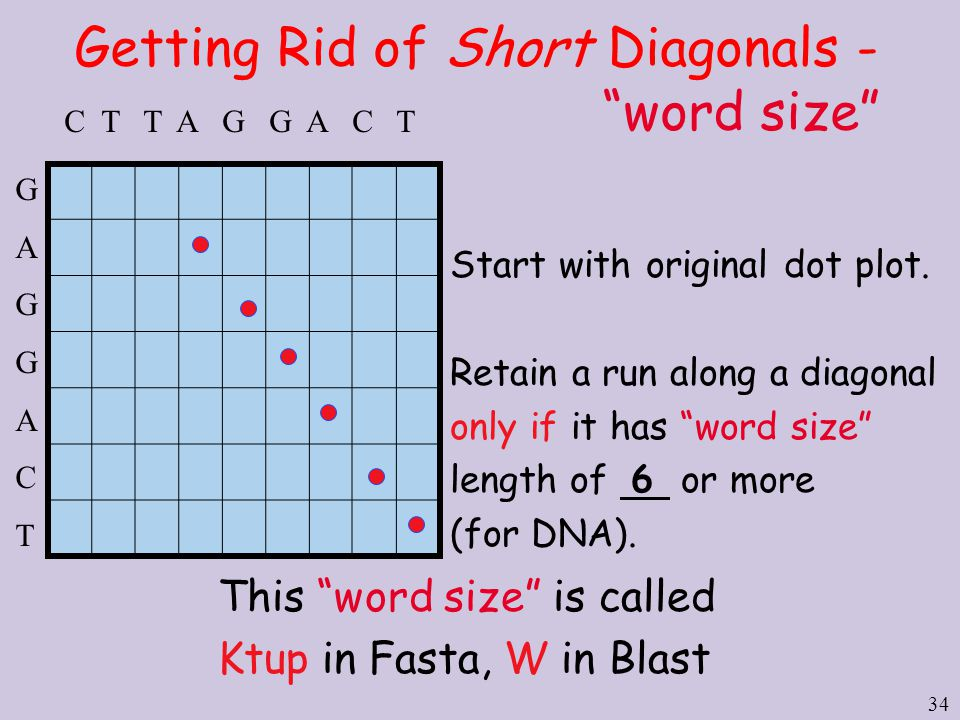 """34 Getting Rid of Short Diagonals - """"word size"""" Start with original dot plot. Retain a run along a diagonal only if it has """"word size"""" length of 6 or"""
