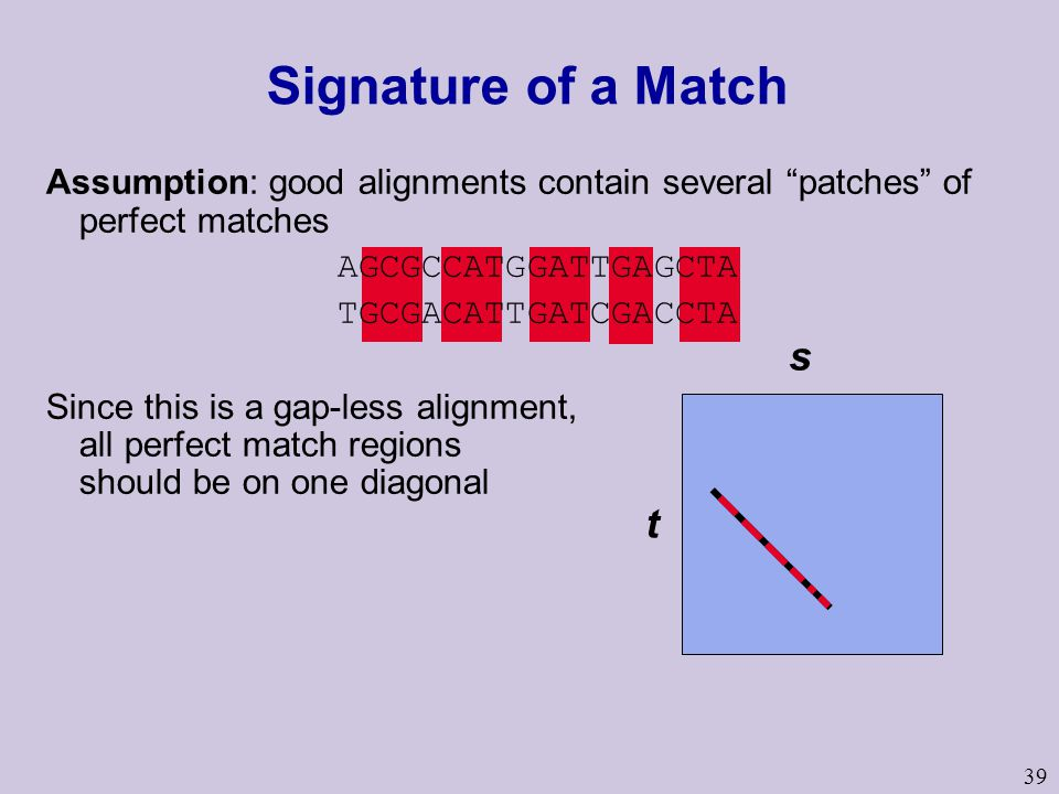 39 Signature of a Match s t Assumption: good alignments contain several patches of perfect matches AGCGCCATGGATTGAGCTA TGCGACATTGATCGACCTA Since this is a gap-less alignment, all perfect match regions should be on one diagonal
