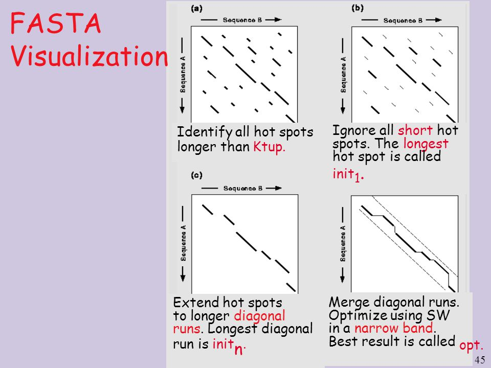 45 FASTA Visualization Identify all hot spots longer than Ktup.