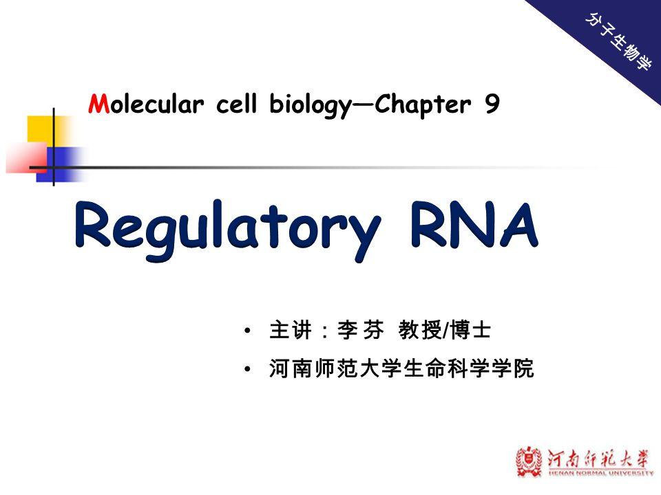 主讲:李 芬 教授 / 博士 河南师范大学生命科学学院 分子生物学 Molecular cell biology—Chapter 9
