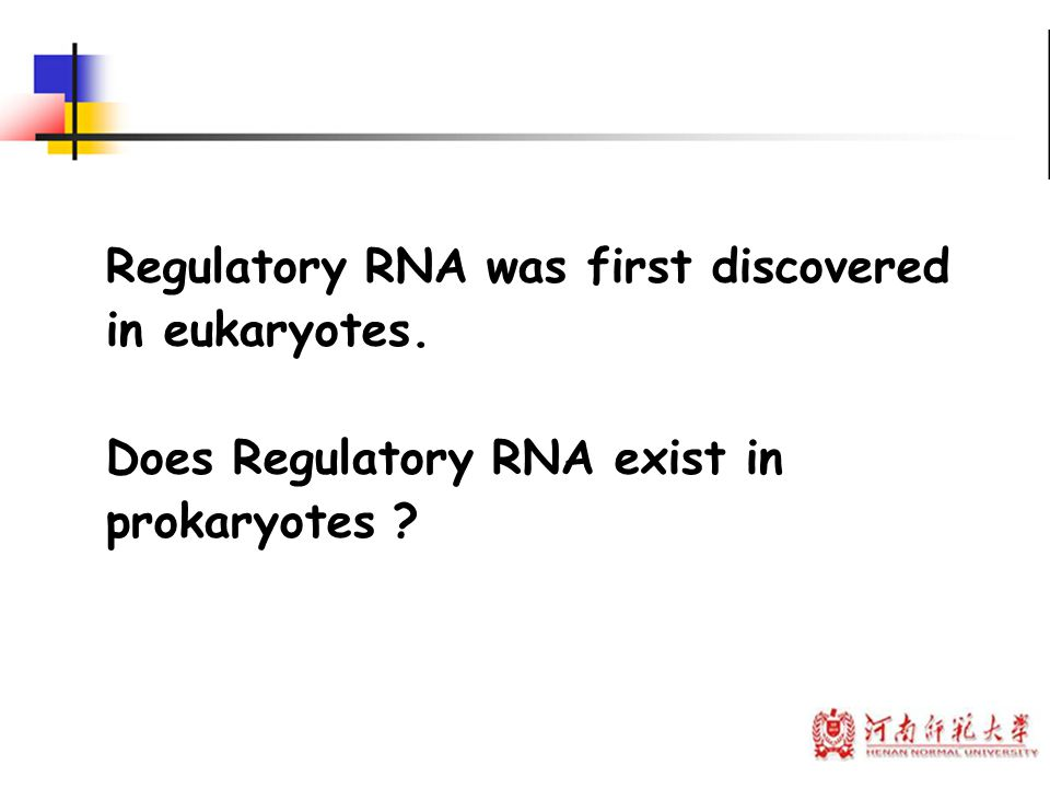 Regulatory RNA was first discovered in eukaryotes. Does Regulatory RNA exist in prokaryotes ?