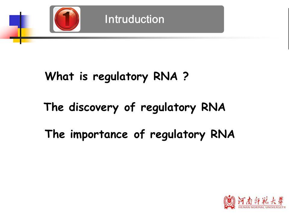 Intruduction The discovery of regulatory RNA What is regulatory RNA ? The importance of regulatory RNA
