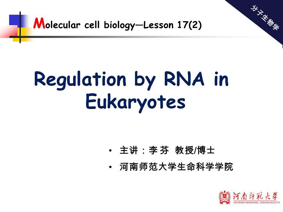 主讲:李 芬 教授 / 博士 河南师范大学生命科学学院 分子生物学 M olecular cell biology—Lesson 17(2)