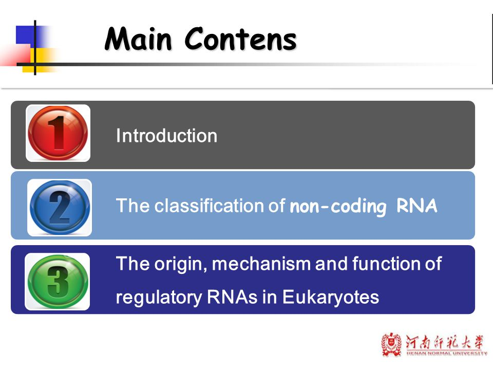 Main Contens Introduction The classification of non-coding RNA The origin, mechanism and function of regulatory RNAs in Eukaryotes