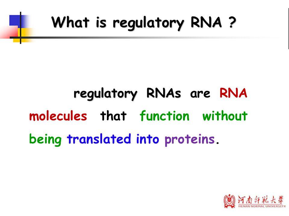 Background: 人类基因组草图带给科 学家们的困惑 The discovery of miRNAs The Discovery of regulatory RNA
