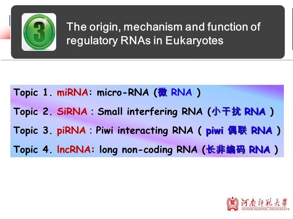 The origin, mechanism and function of regulatory RNAs in Eukaryotes 微 Topic 1. miRNA: micro-RNA ( 微 RNA ) 小干扰 RNA Topic 2. SiRNA : Small interfering R