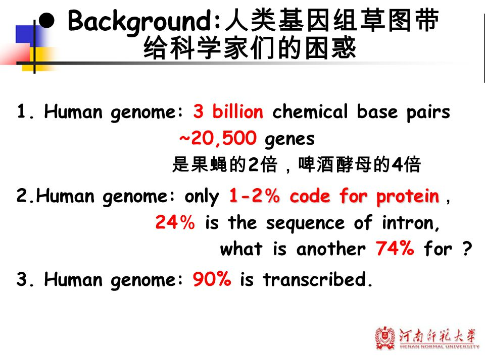 microRNAs had been neglected for so many years because of their small size.