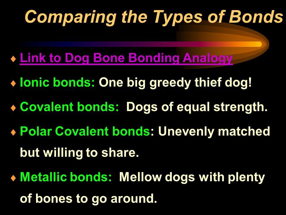  Link to Dog Bone Bonding Analogy Link to Dog Bone Bonding Analogy  Ionic bonds: One big greedy thief dog!  Covalent bonds: Dogs of equal strength.