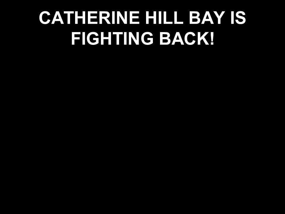 CATHERINE HILL BAY IS FIGHTING BACK!