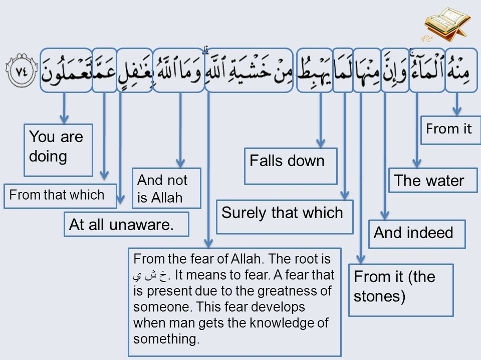Your Rabb Do you have no intellect?