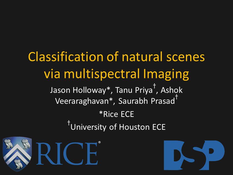 Classification of natural scenes via multispectral Imaging