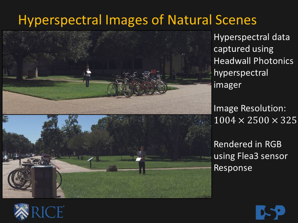 Hyperspectral Images of Natural Scenes