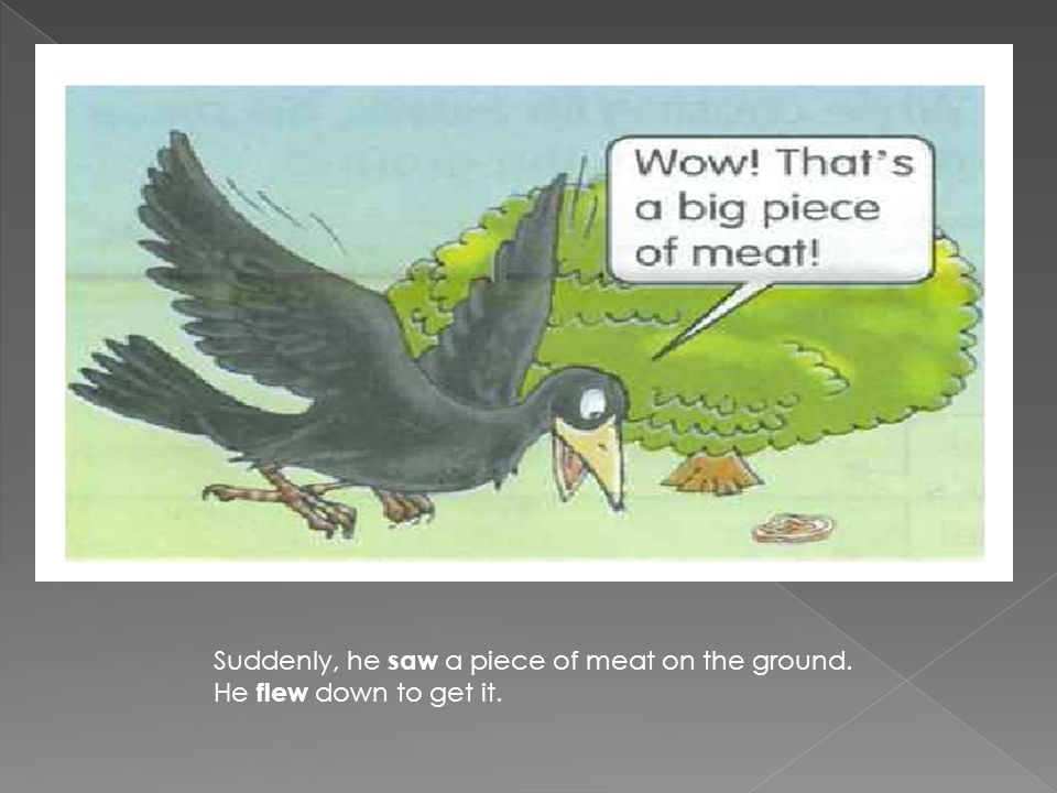 Suddenly, he saw a piece of meat on the ground. He flew down to get it.