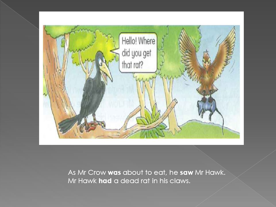 As Mr Crow was about to eat, he saw Mr Hawk. Mr Hawk had a dead rat in his claws.