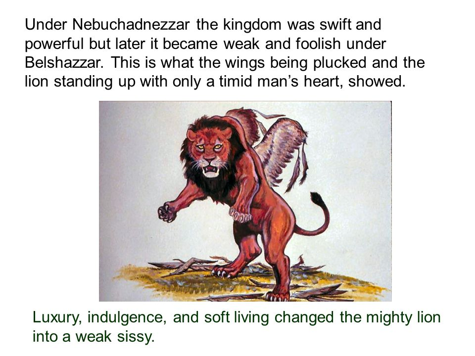 Under Nebuchadnezzar the kingdom was swift and powerful but later it became weak and foolish under Belshazzar.