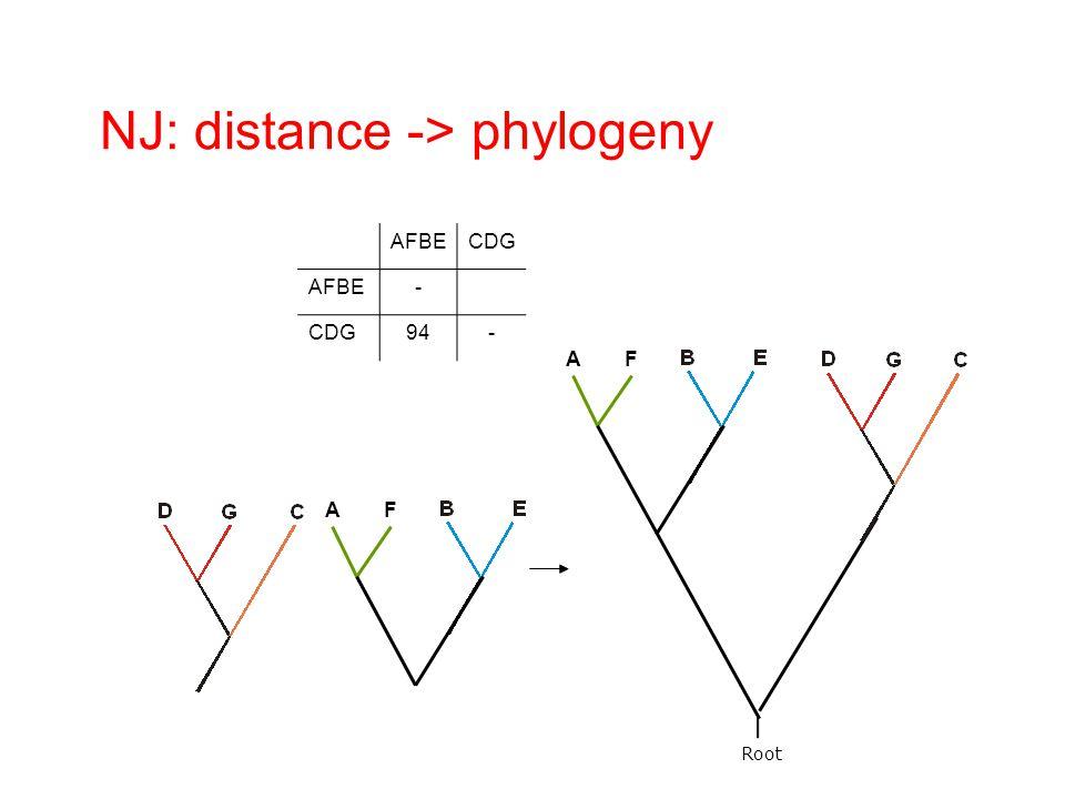 Root AFBECDG AFBE- CDG94- AF NJ: distance -> phylogeny AF
