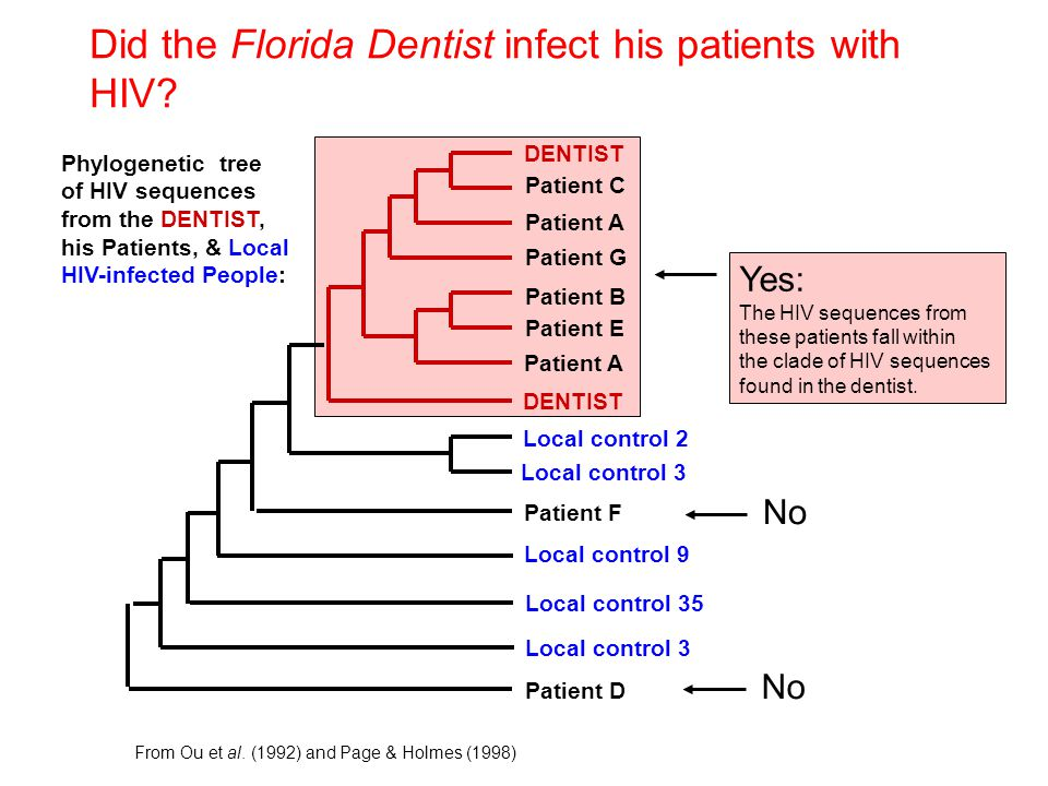 Did the Florida Dentist infect his patients with HIV? DENTIST Patient D Patient F Patient C Patient A Patient G Patient B Patient E Patient A Local co