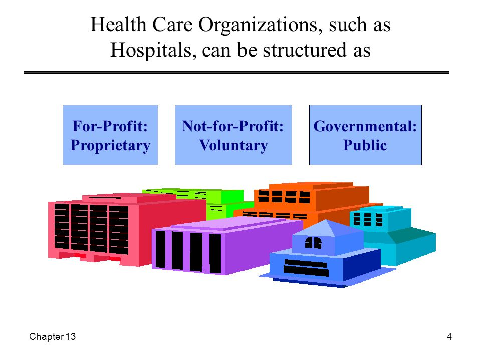 Chapter 135 Examples of Health Care Organizations  Not-for-Profit: St.