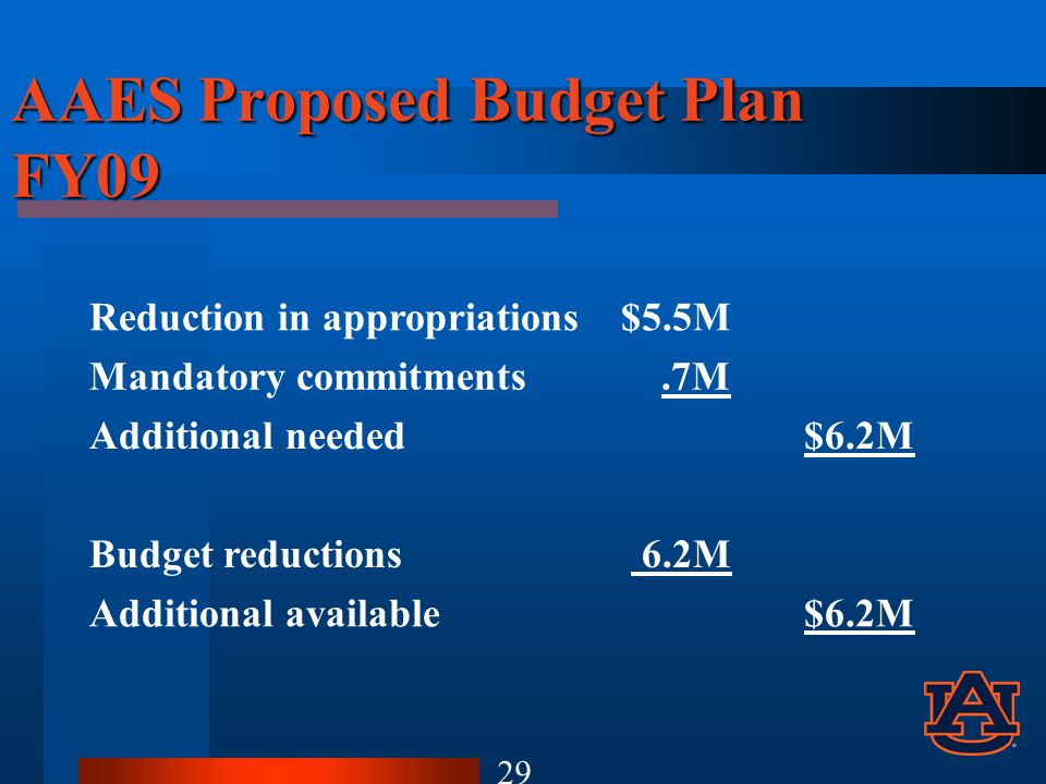 AAES Proposed Budget Plan FY09 Reduction in appropriations$5.5M Mandatory commitments.7M Additional needed$6.2M Budget reductions 6.2M Additional available$6.2M 29