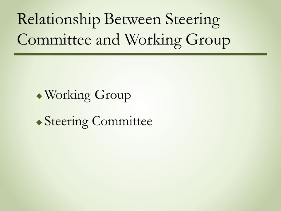 Relationship Between Steering Committee and Working Group  Working Group  Steering Committee