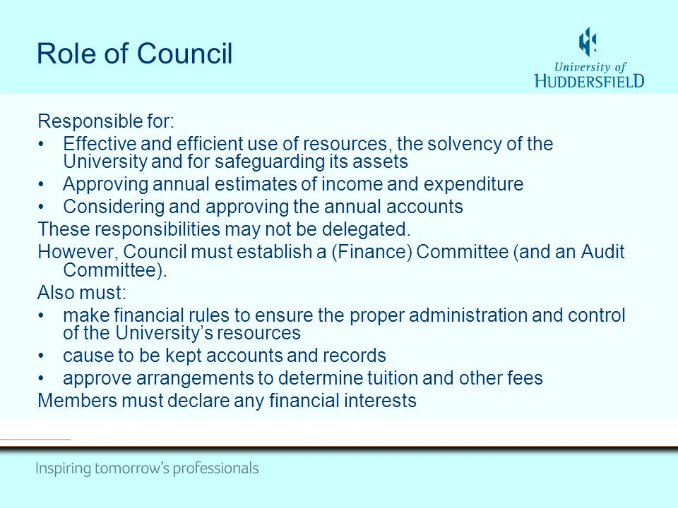Role of Council Responsible for: Effective and efficient use of resources, the solvency of the University and for safeguarding its assets Approving annual estimates of income and expenditure Considering and approving the annual accounts These responsibilities may not be delegated.