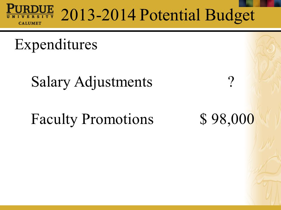 2013-2014 Potential Budget Expenditures Salary Adjustments? Faculty Promotions$ 98,000