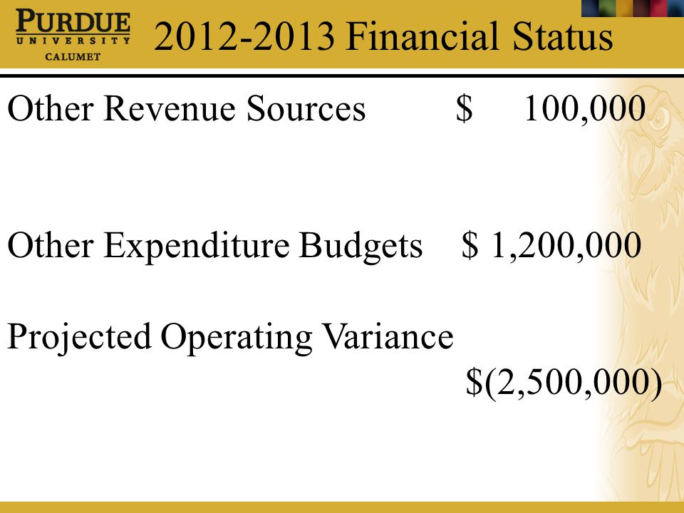 2012-2013 Financial Status Other Revenue Sources $ 100,000 Other Expenditure Budgets $ 1,200,000 Projected Operating Variance $(2,500,000)