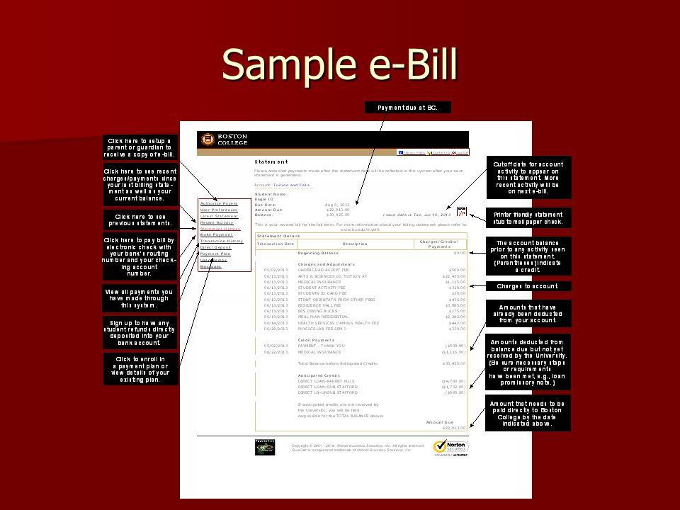 Sample e-Bill