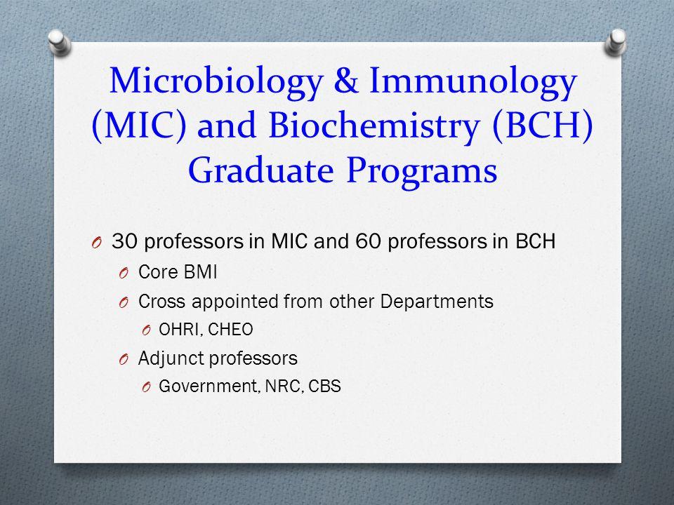 Structure of MIC graduate program O Director - Dr.