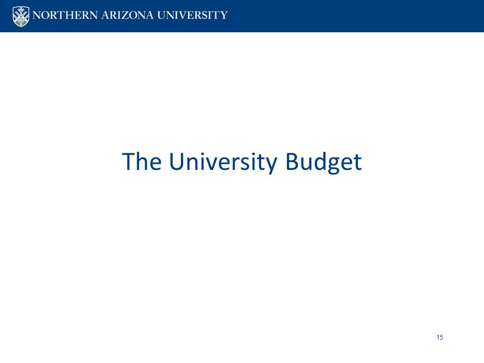 The University Budget 15