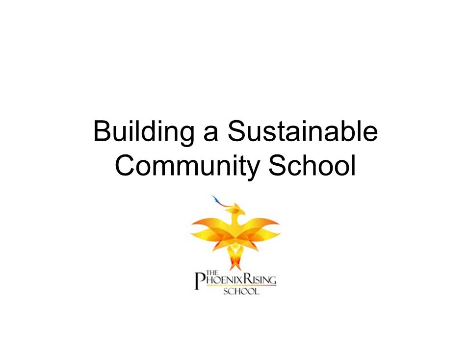 Building a Sustainable Community School
