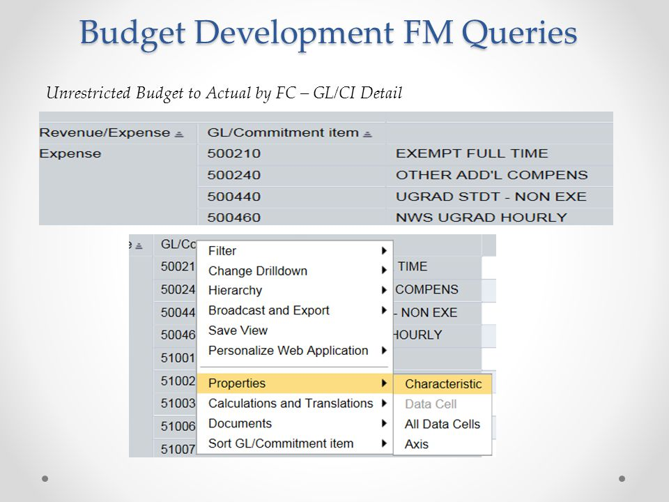 Budget Development FM Queries Unrestricted Budget to Actual by FC – GL/CI Detail