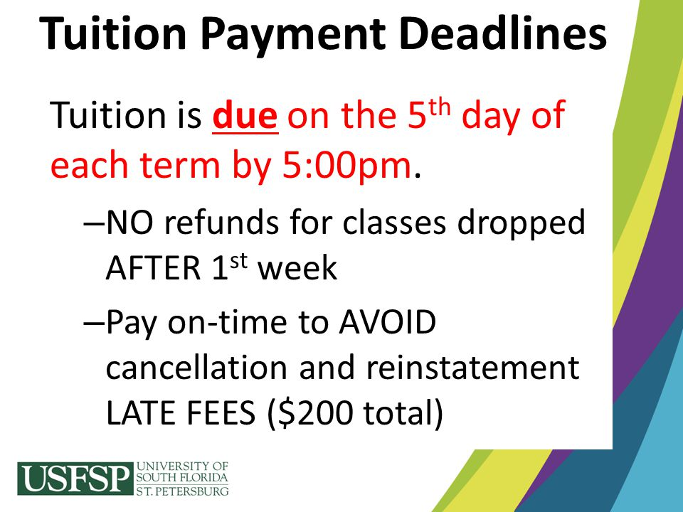 Annual Renewal Process: – Apply between January 1 st and March 1 st (USF's priority deadline) of every year thereafter until education is completed.