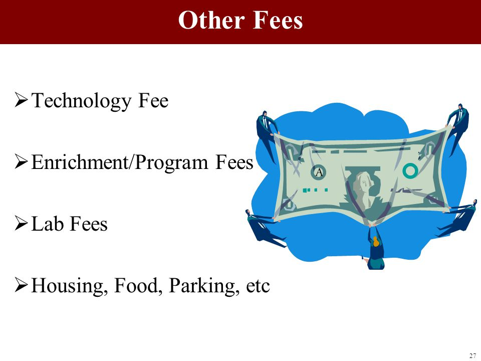  Technology Fee  Enrichment/Program Fees  Lab Fees  Housing, Food, Parking, etc 27 Other Fees