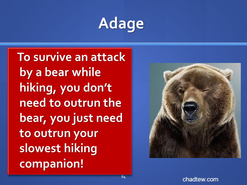 Adage To survive an attack by a bear while hiking, you don't need to outrun the bear, you just need to outrun your slowest hiking companion.
