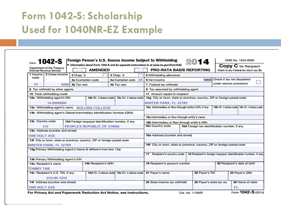 Form 1042-S: Scholarship Used for 1040NR-EZ Example