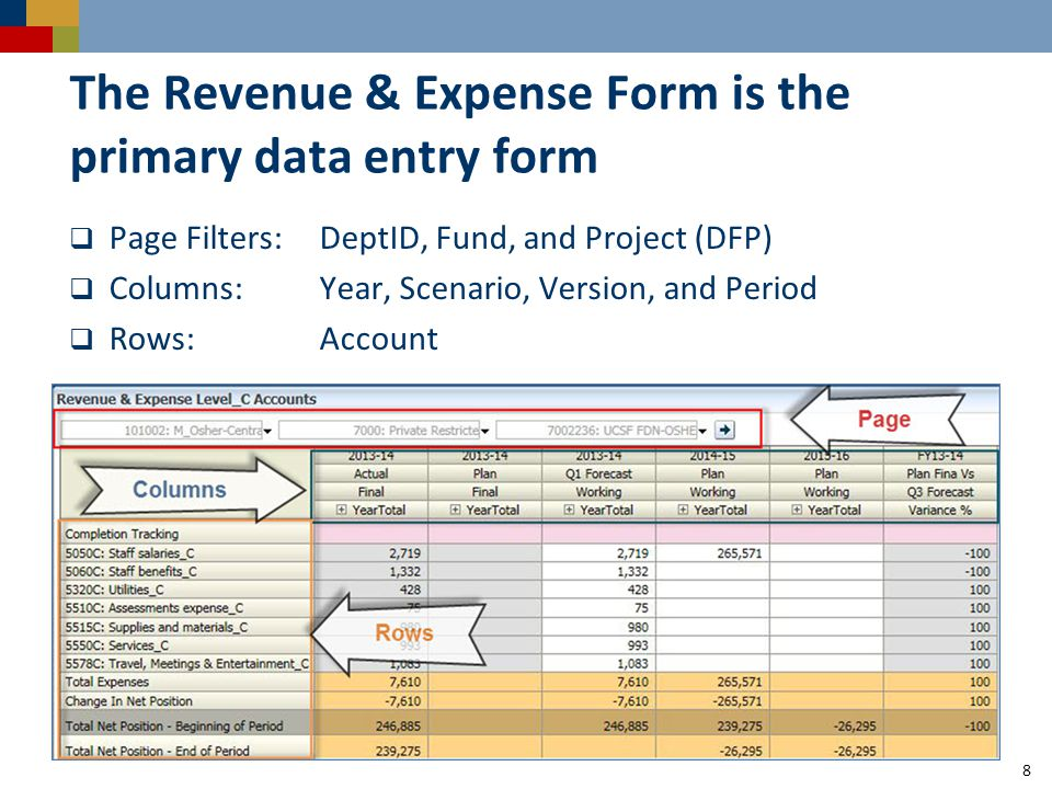 The Revenue & Expense Form is the primary data entry form  Page Filters:DeptID, Fund, and Project (DFP)  Columns:Year, Scenario, Version, and Period  Rows:Account 8
