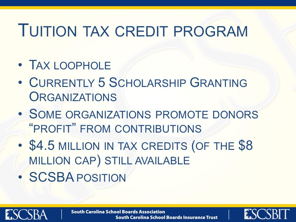 T UITION TAX CREDIT PROGRAM T AX LOOPHOLE C URRENTLY 5 S CHOLARSHIP G RANTING O RGANIZATIONS S OME ORGANIZATIONS PROMOTE DONORS PROFIT FROM CONTRIBUTIONS $4.5 MILLION IN TAX CREDITS ( OF THE $8 MILLION CAP ) STILL AVAILABLE SCSBA POSITION