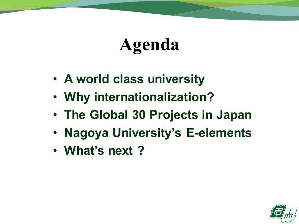 Agenda A world class university Why internationalization.