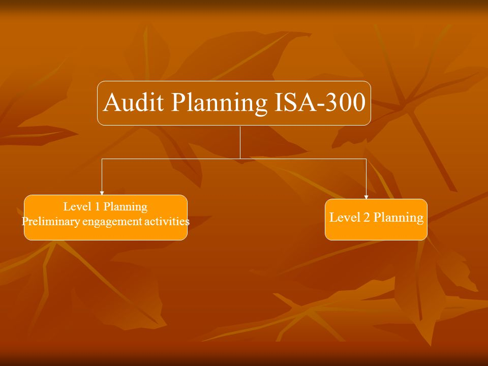 Can we do this auditConsent Letter AEL ISA-210 Level 1 Planning Preliminary engagement activities