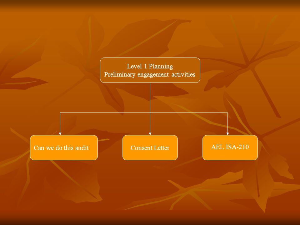 Level 2 Planning Audit PlanAudit Strategy