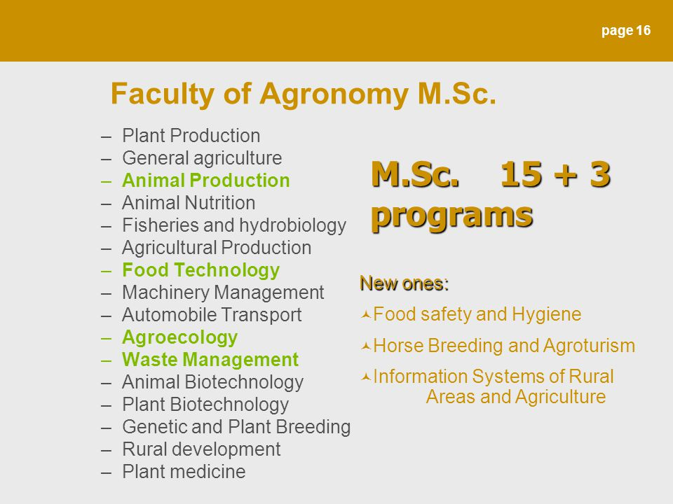 page 16 Faculty of Agronomy M.Sc. –Plant Production –General agriculture –Animal Production –Animal Nutrition –Fisheries and hydrobiology –Agricultura