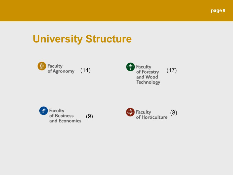 page 9 University Structure (14)(17) (9) (8)
